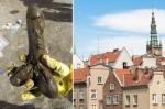 Tìm thấy đồ chơi tình dục 300 năm tuổi tại Ba Lan